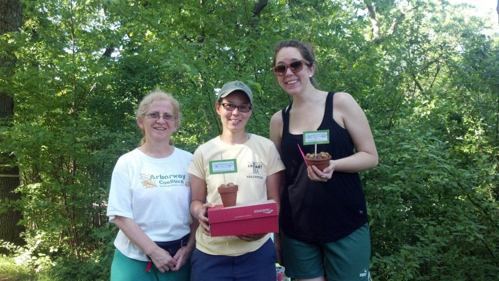 "(Courtesy Photo) (from left) Sarah Freeman of the Arborway Coalition presents ""Acorn Awards""—cups of acorns from Arborway oak trees—to JP resident and Arnold Arboretum employee Sue Pfeiffer and Alison Yoos of JP's Community Caring Institute on the Arborway on June 1. The two were recognized for their work securing grants, trees and gear for a tree-planting that day on the Arborway Hillside at the St. Rose Street intersection."