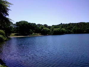 JP History: How swimming in Jamaica Pond became history